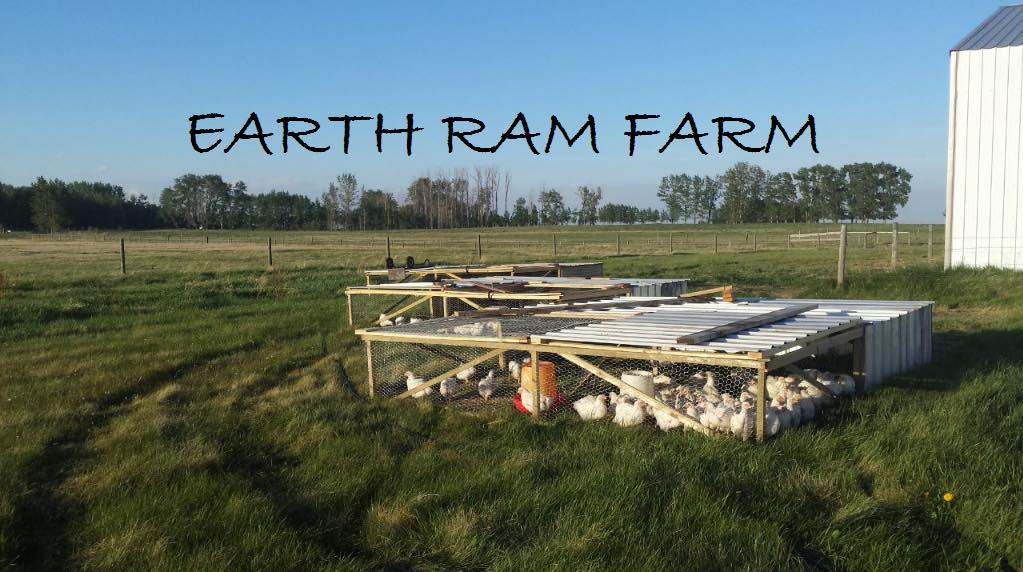 earth-ram-farm