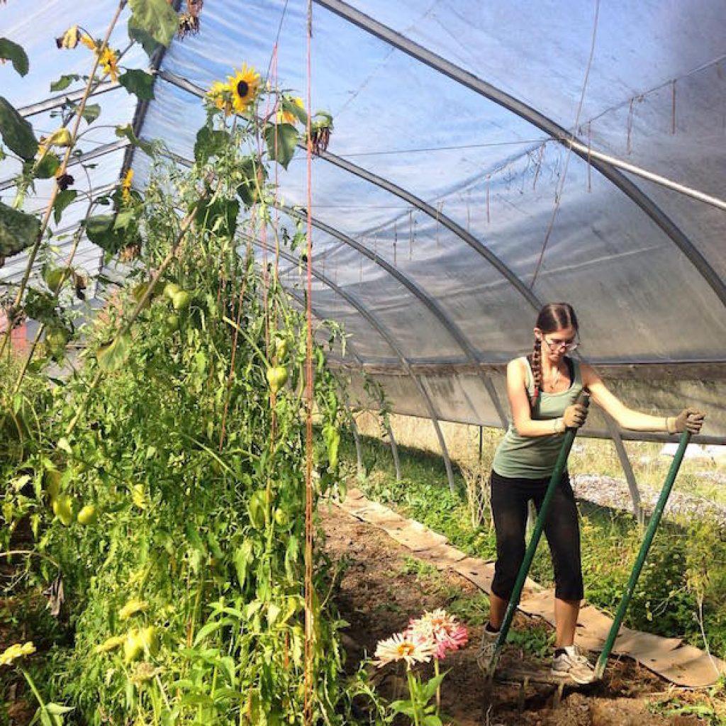 jessica-farm-work