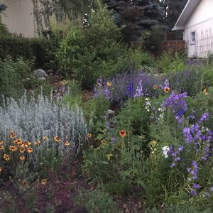 organic-landscaping-example