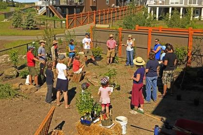 provisions-permaculture