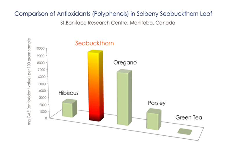 seabuckthorn polyphenols comparison