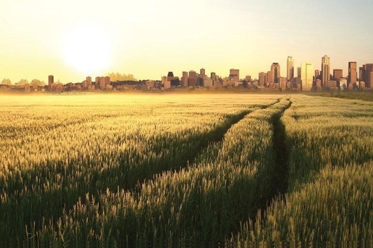 urban-rural